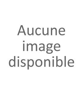Ecrou de couronne Ducati 74840241AB